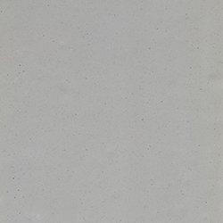 1321 Grey
